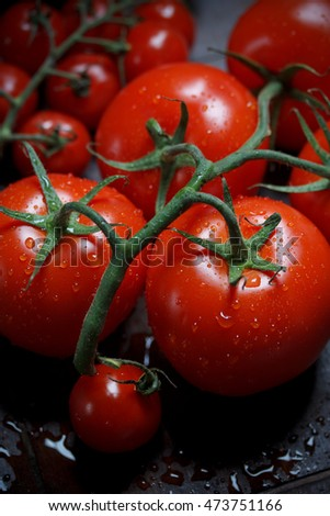 Twig tomatoes with drops of water
