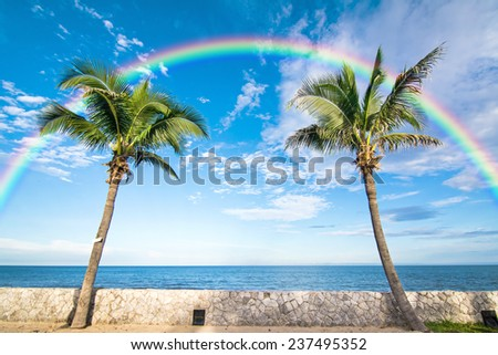 Twin coconut trees with sea, sky and rainbow background - stock photo