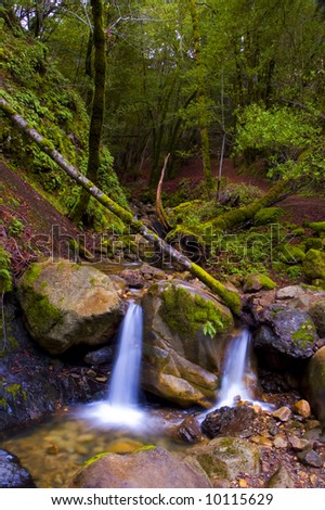 twin falls in the forest - stock photo