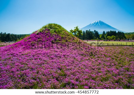 Twins Mt.Fuji with meadow of Phlox Subulata, Shibazakura festival, Japan. - stock photo