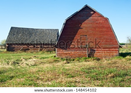 Two abandoned red barns in spring.  Situated in a grassy meadow - stock photo