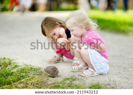 Two adorable little sisters playing with a hedgehog outdoors - stock photo
