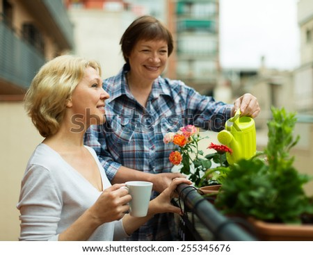 Two aged women drinking tea at terrace with decorative plants - stock photo