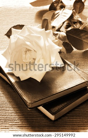 Two antique books and a rose. Vintage black&white, sepia-toned - stock photo