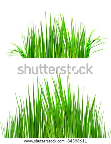 two backgrounds of green grass useful for photo retouch - stock photo