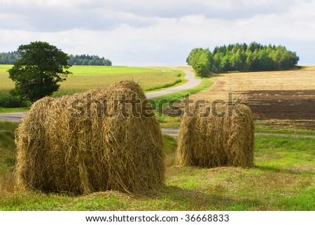 two bales of straw on the field near the road - stock photo