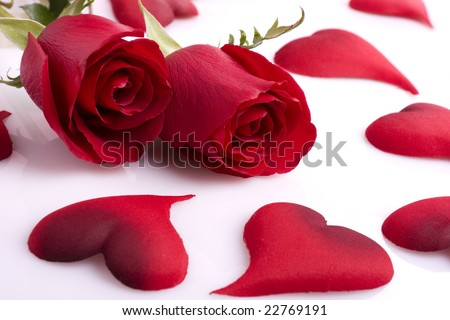 Two beautiful red roses with hearts on a white background