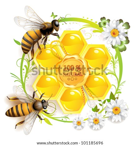 Two bees and honeycombs over floral background