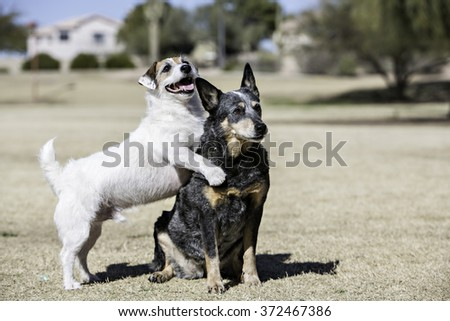 Two best friends hugging - stock photo