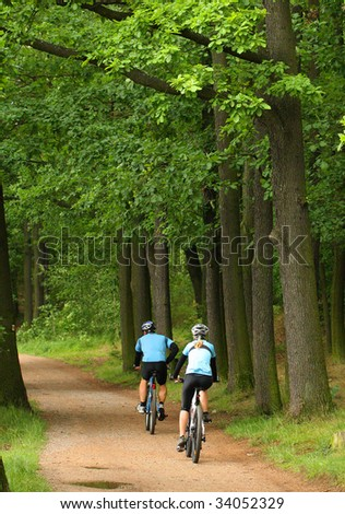 Two bikers in the oak alley - stock photo