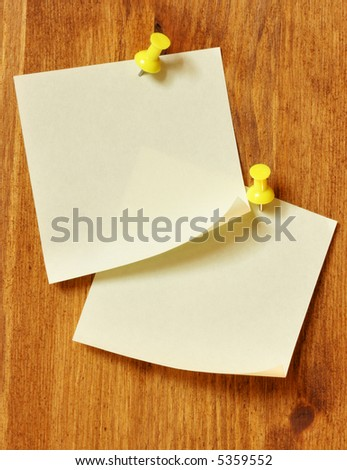 Two blank note papers attached to a wooden wall