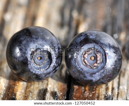 Two blueberries on a table - stock photo