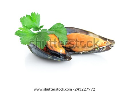 two boiled mussels with parsley isolated over white background - stock photo