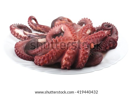 two boiled octopus on a white plate - stock photo