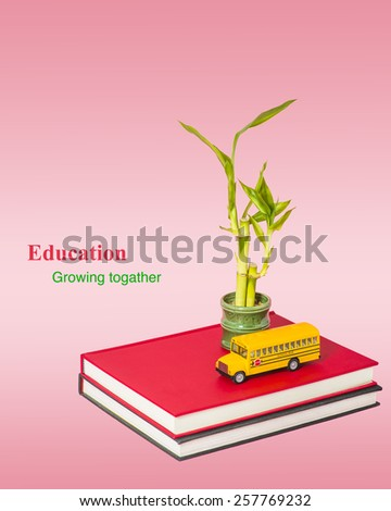 Two books with a model of school bus, bamboo plants. Isolated on pink background. Symbolic concept of Education, school system and children growth. Copy space.  - stock photo