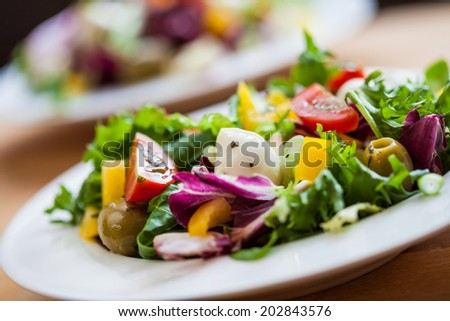 Two bowls of deliciously fresh salad with mozzarella, tomato and pepper - stock photo