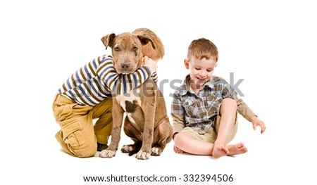 Two boys and a puppy pit bull sitting together isolated on white background - stock photo