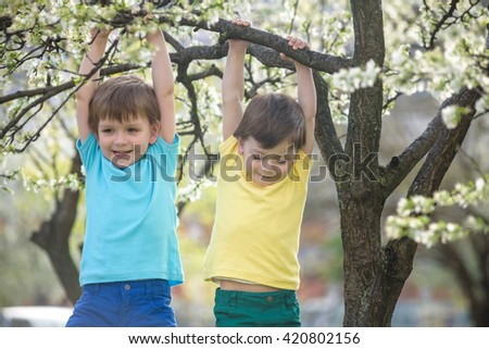 Two boys brothers kids hanging from a blossom spring tree and having fun in the nature