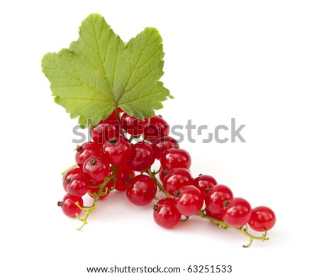 Two branches of ripe red currant with leaves on white background - stock photo