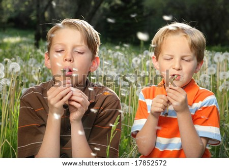two brothers blowing dandelions - stock photo