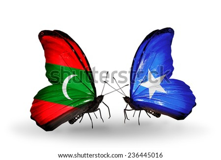 Two butterflies with flags on wings as symbol of relations Maldives and Somalia - stock photo