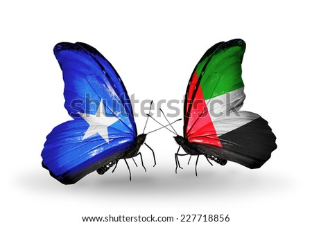 Two butterflies with flags on wings as symbol of relations Somalia and UAE - stock photo