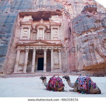 Two Camels in front of the Treasury at Petra, Jordan