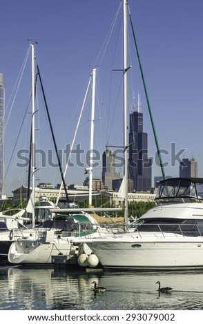 Two Canadian geese (binomial name: Branta canadensis) glide by yachts in Burnham Harbor in the distance on a sunny June morning in Chicago, Illinois, USA - stock photo