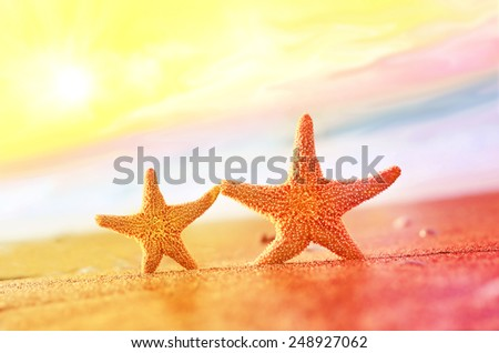 Two caribbean starfish over beach such a summer vacation symbol - stock photo