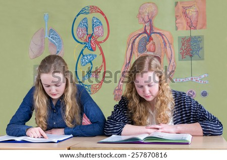 Two caucasian teenage girls reading text books with biology wall chart of human body - stock photo