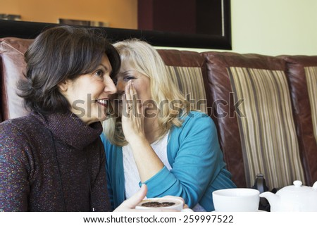 Two charming mature women sitting in the cafe and whispering. - stock photo