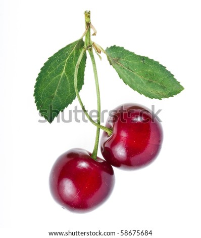 Two Cherries isolated on white background