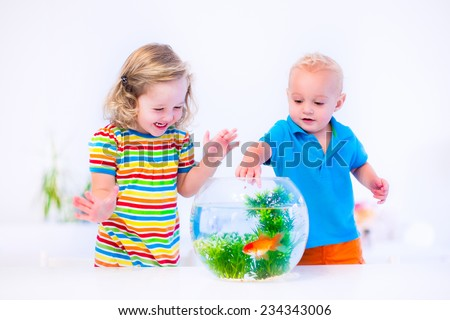 Two children, brother and sister, cute little girl and adorable baby boy feeding a goldfish swimming in a round fish bowl aquarium having fun with their pet at home - stock photo