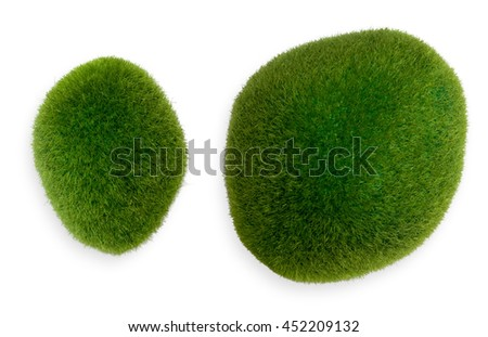 Two chunks of green moss. Isolated object on white background.