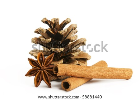 two cinnamon sticks one star anise and a conifer cone on white background - stock photo