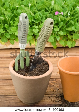 Two Clay Flower Pots on Wooden Table Being Prepared for Potting - stock photo