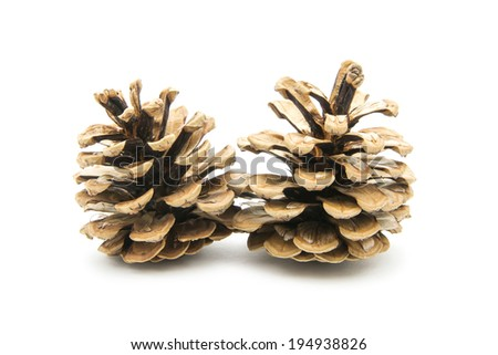two cones isolated on white background - stock photo