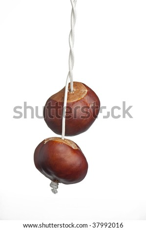 two conkers on twisted string - stock photo