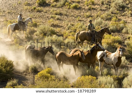 Two Cowboys gathering up their horses in early morning light - stock photo