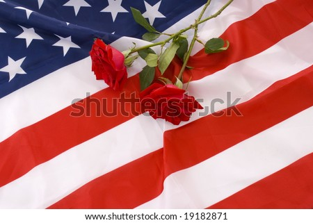 Two crossed red roses in the flag of United States. - stock photo