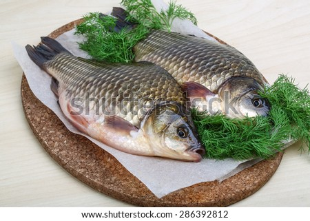 Two crucian with dill ready for cooking - stock photo