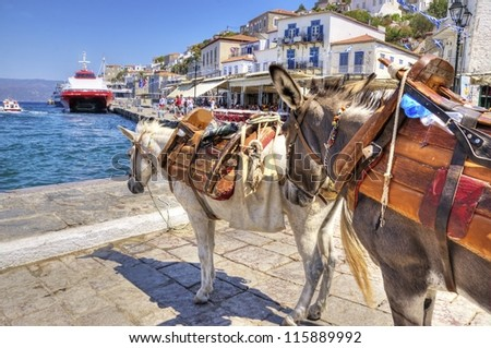 Two donkeys at the Greek island, Hydra. They are the only means of transport on the island, no cars are allowed. - stock photo