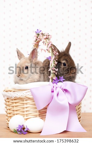 two easter bunnies in a basket with eggs and flowers