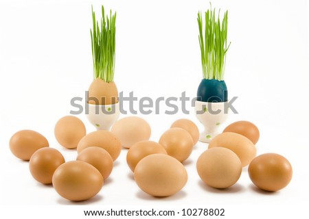 two eggs in egg-cup with growing grass among other eggs - stock photo
