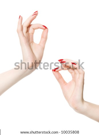 Two elegant woman hands. Isolated on white. - stock photo