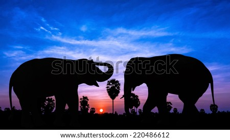 Two elephant on twilight time in Thailand Asia - stock photo