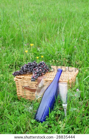 Two empty wine glasses with a wine bottle along with a picnic basket and grapes out in a beautiful Spring green field.