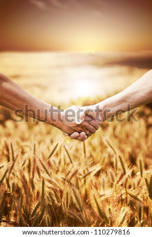 Two farmer's hands handshake at the harvest of wheat field. - stock photo