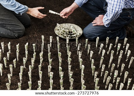 Two farmers sharing money behind money field - stock photo