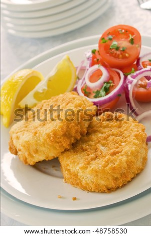 Two fish cakes on a plate with salad and sliced lemons - stock photo